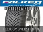 Falken - HS01 Eurowinter SUV téligumik