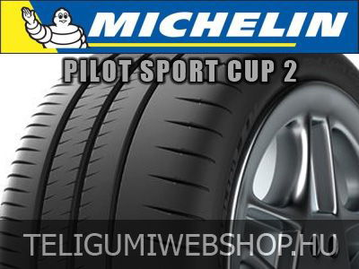 michelin pilot sport cup rg p. Black Bedroom Furniture Sets. Home Design Ideas